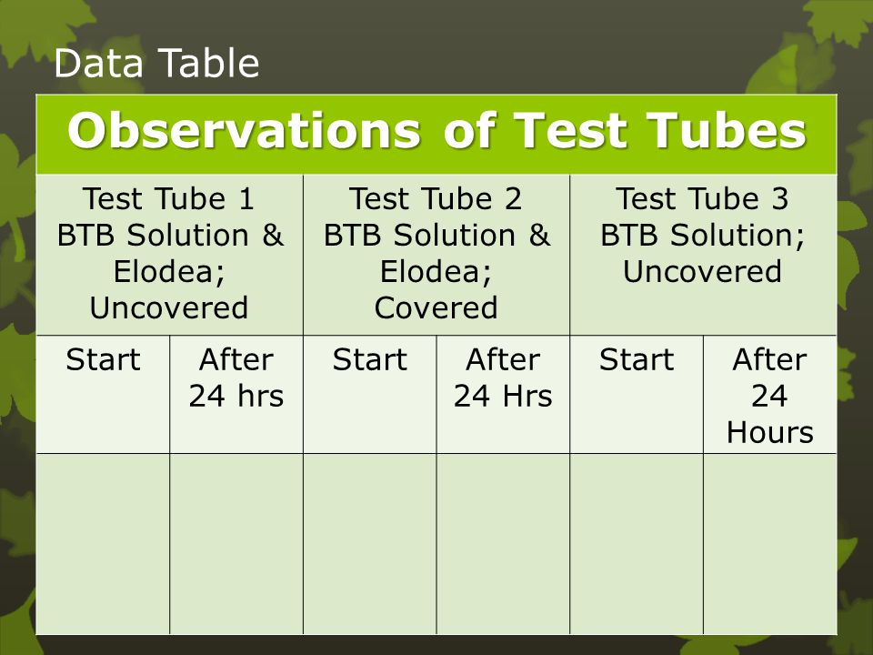 Observations of Test Tubes