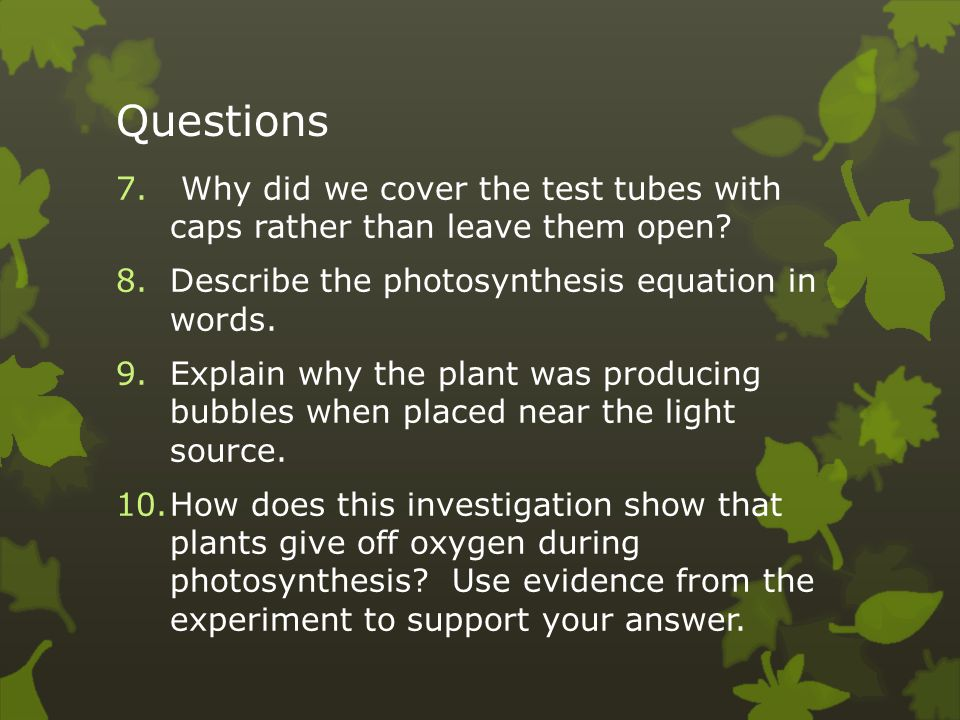 Questions Why did we cover the test tubes with caps rather than leave them open Describe the photosynthesis equation in words.