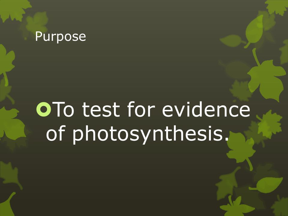To test for evidence of photosynthesis.