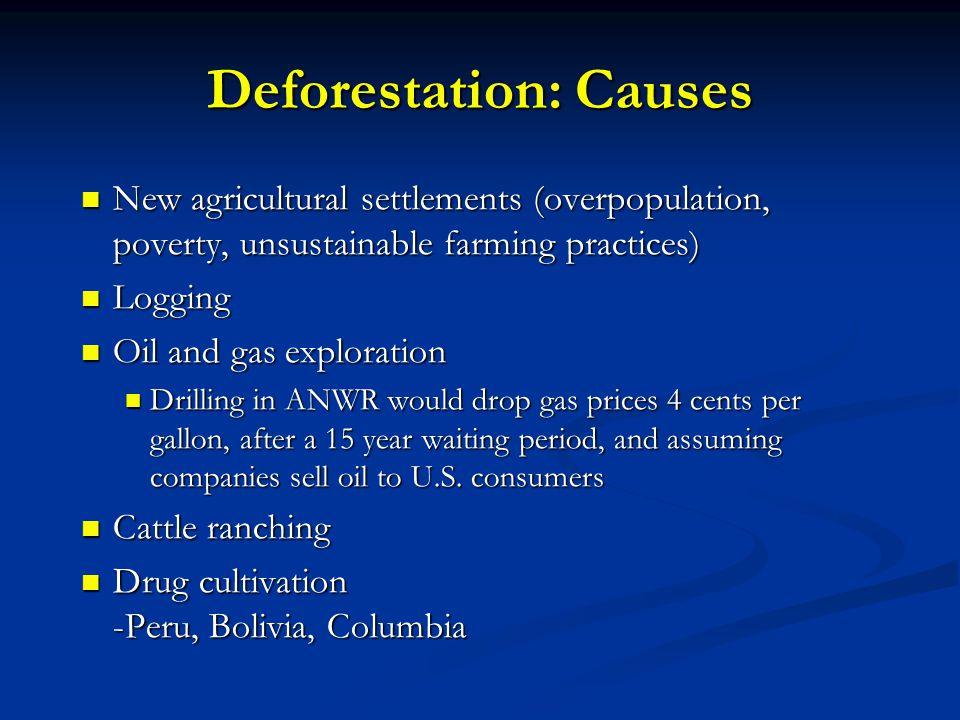 Deforestation: Causes