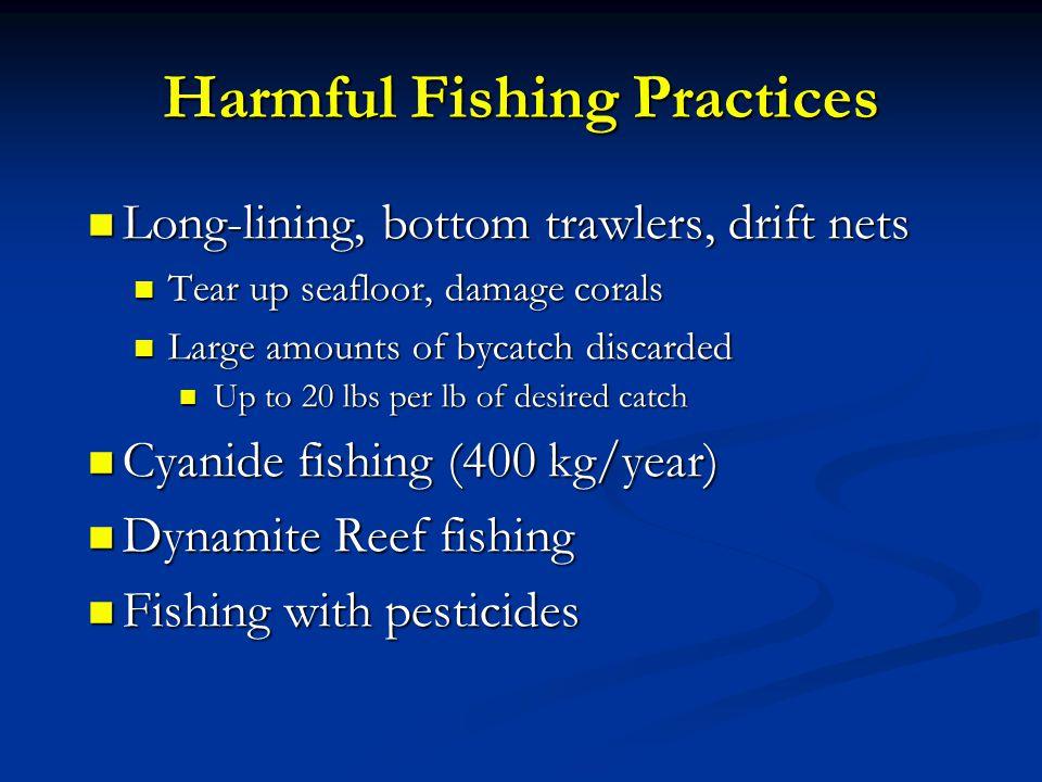 Harmful Fishing Practices
