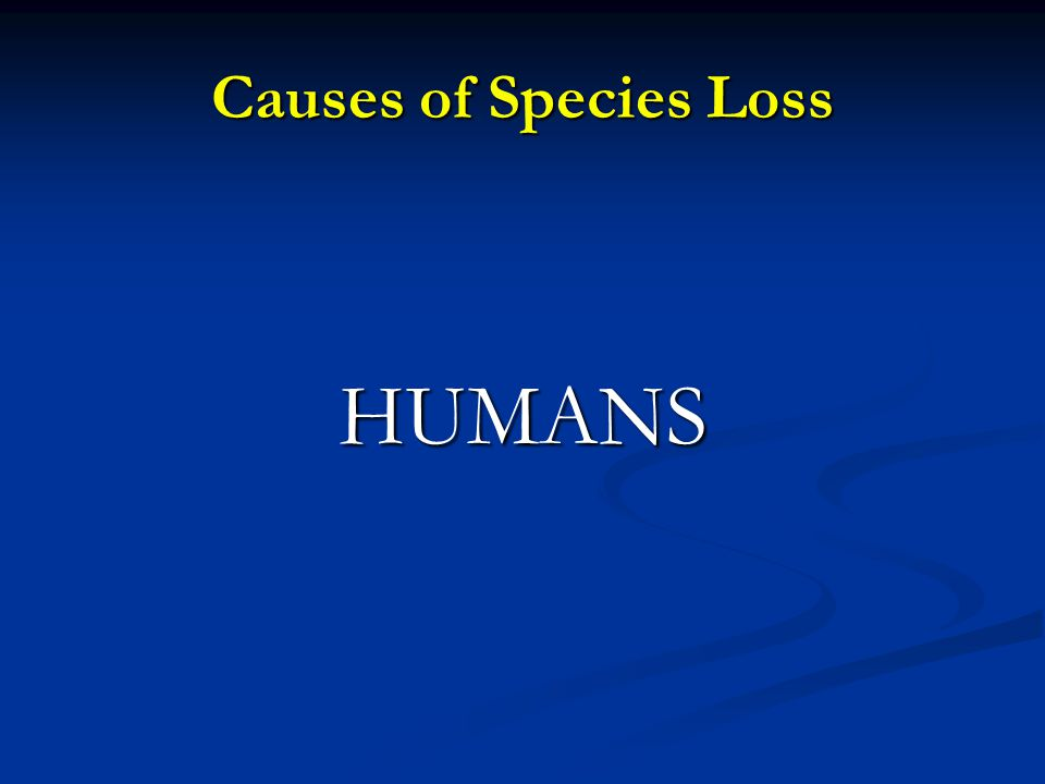 Causes of Species Loss HUMANS