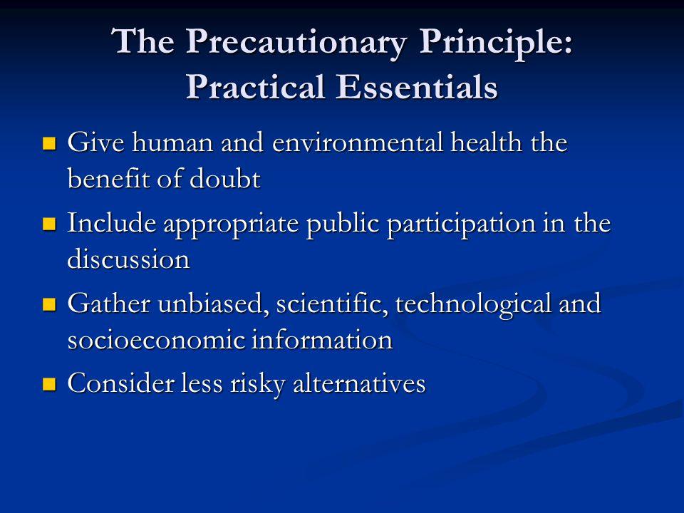 The Precautionary Principle: Practical Essentials