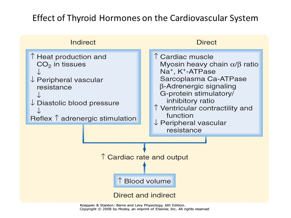 what is the effect of sodium ions on heart rate Physiologic mechanisms of heart rate variability harald m stauss,  • heart rate spectral analysis as indicator of  reduction of sodium concentration in the.