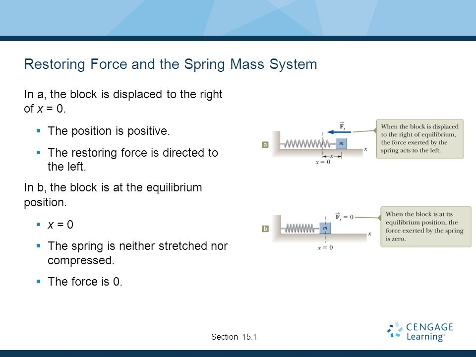 Restoring Force and the Spring Mass System
