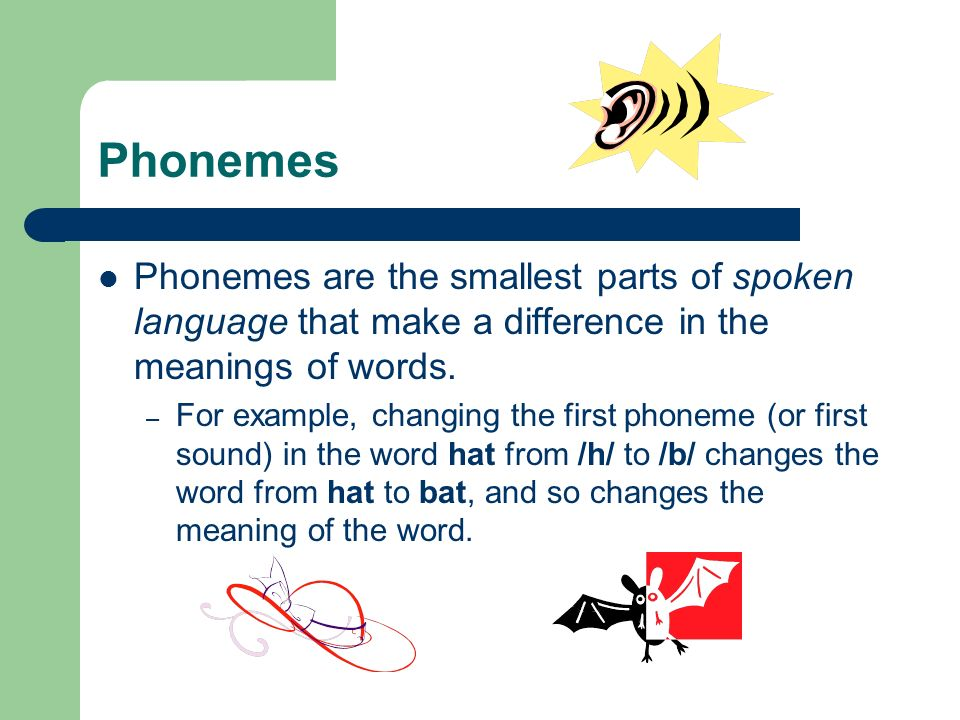 Phonemes Phonemes are the smallest parts of spoken language that make a difference in the meanings of words.