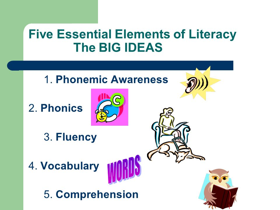 Five Essential Elements of Literacy The BIG IDEAS