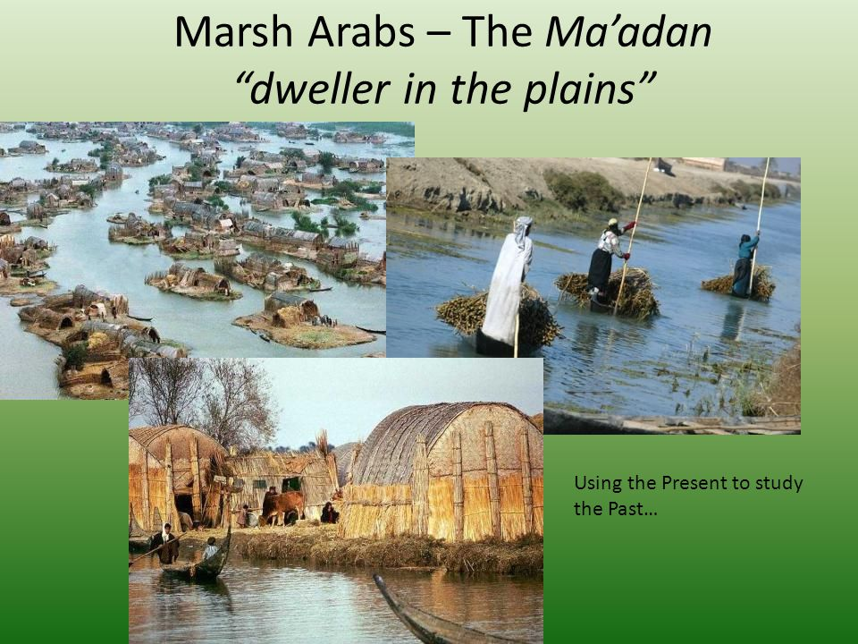 Marsh Arabs – The Ma'adan dweller in the plains