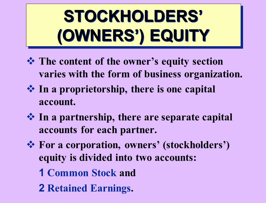 STOCKHOLDERS' (OWNERS') EQUITY