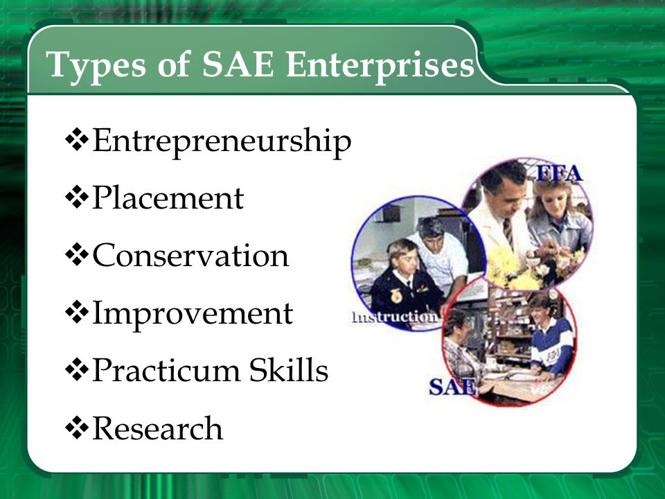 Types of SAE Enterprises