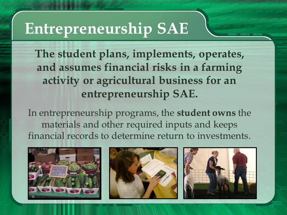 Entrepreneurship SAE