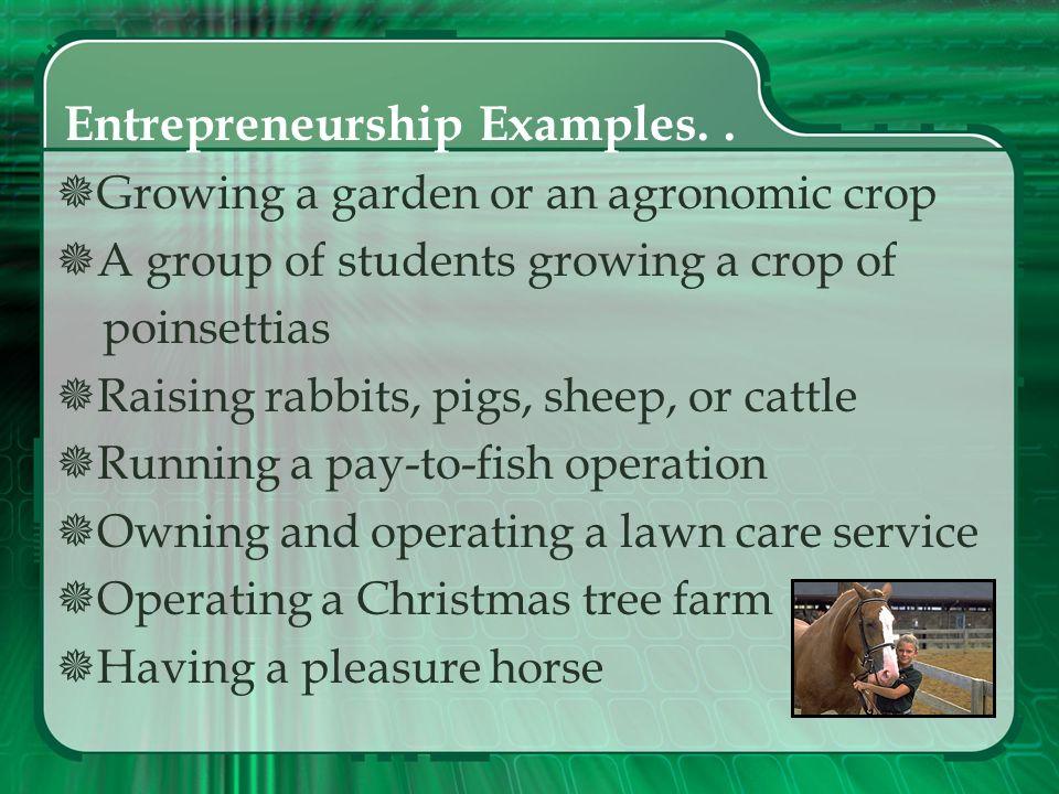 Entrepreneurship Examples. .