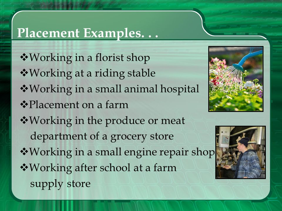 Placement Examples. . . Working in a florist shop