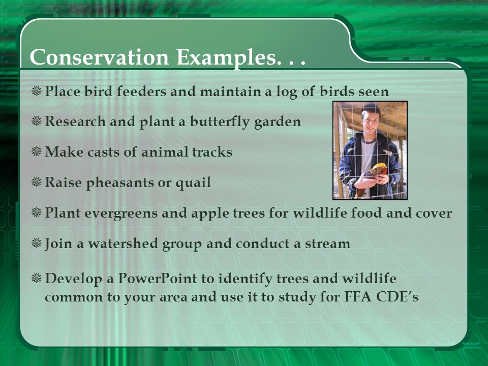 Conservation Examples. . .