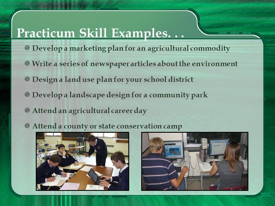 Practicum Skill Examples. . .