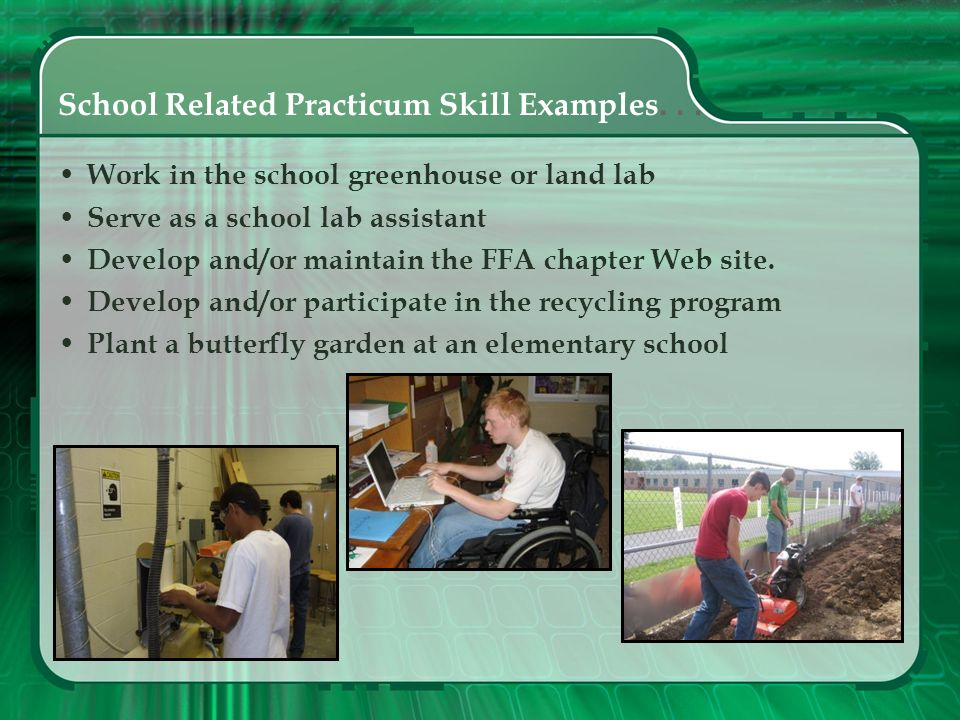 School Related Practicum Skill Examples. . .