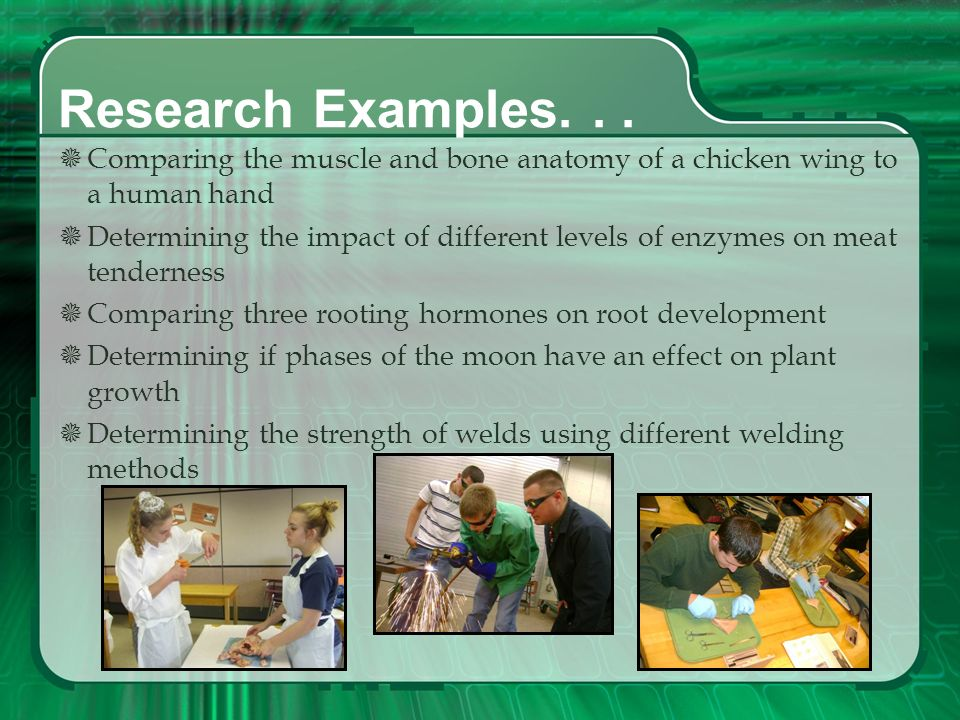 Research Examples. . . Comparing the muscle and bone anatomy of a chicken wing to a human hand.