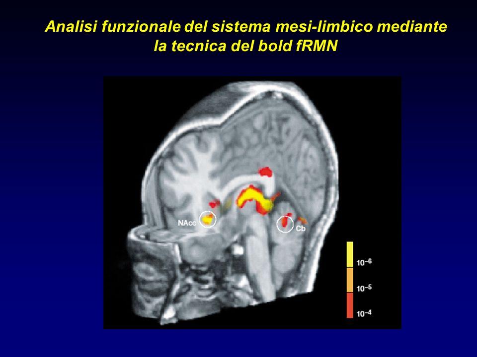 Analisi funzionale del sistema mesi-limbico mediante