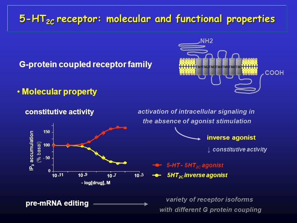 5-HT2C receptor: molecular and functional properties
