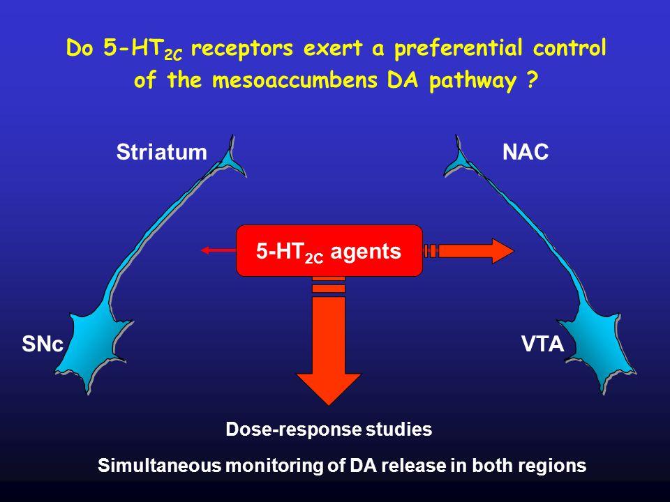 Do 5-HT2C receptors exert a preferential control of the mesoaccumbens DA pathway