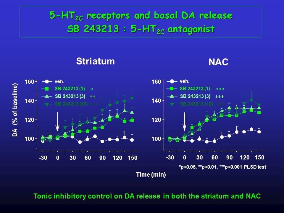 5-HT2C receptors and basal DA release