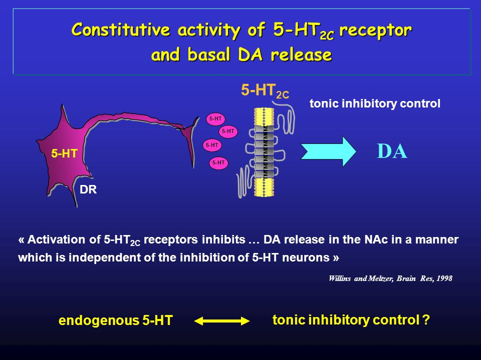 Constitutive activity of 5-HT2C receptor