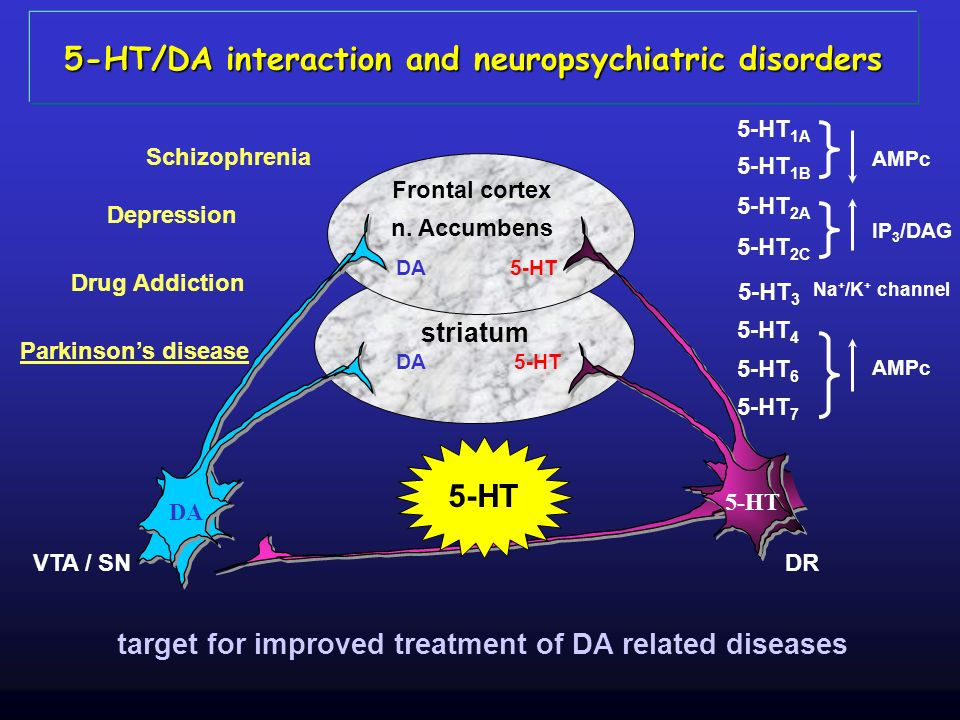 5-HT/DA interaction and neuropsychiatric disorders