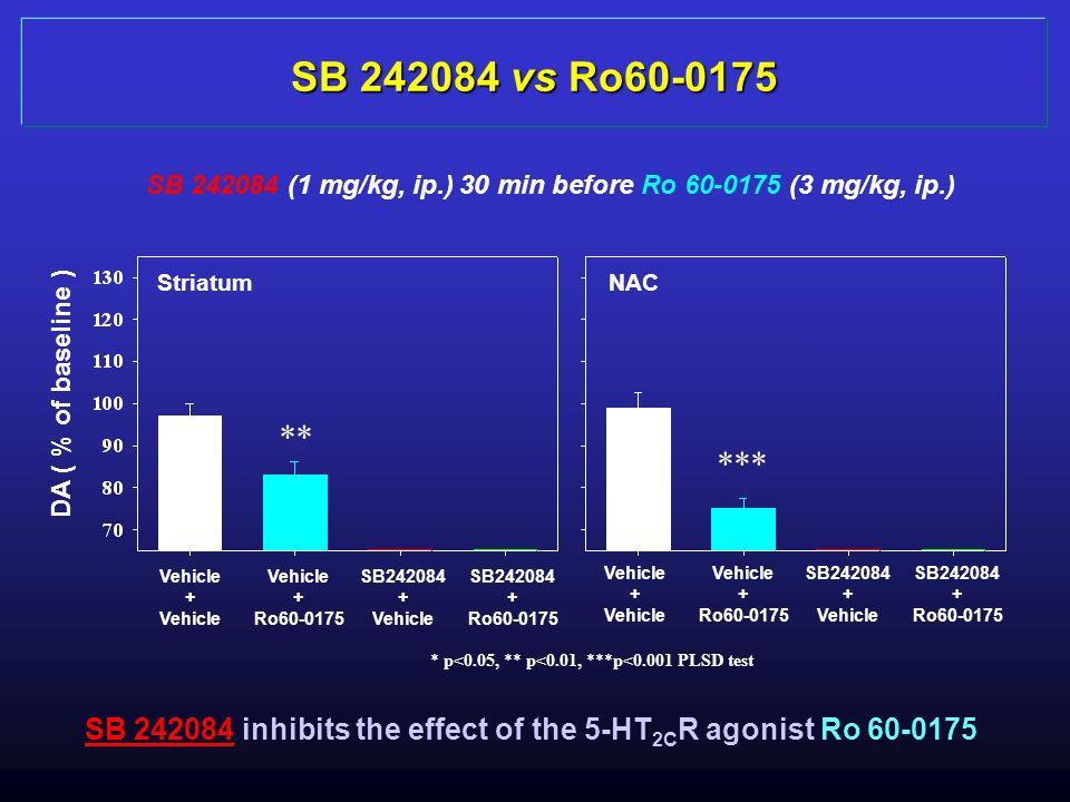 SB 242084 vs Ro60-0175 SB 242084 (1 mg/kg, ip.) 30 min before Ro 60-0175 (3 mg/kg, ip.) Striatum. NAC.