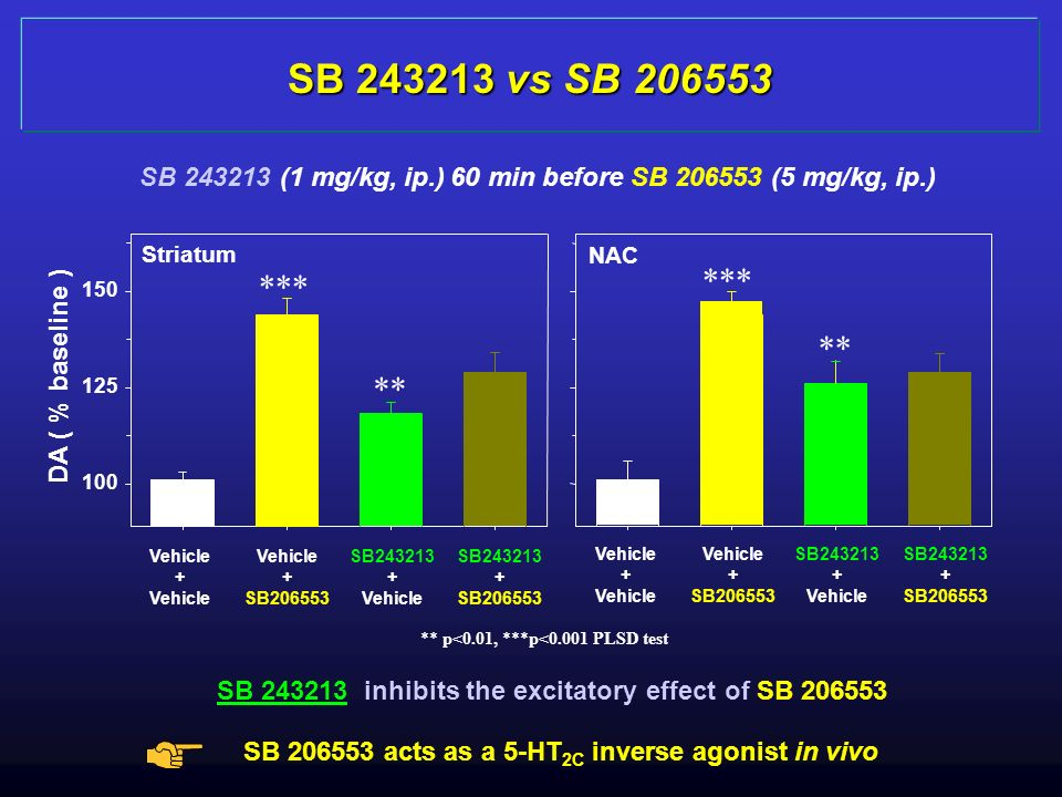 SB vs SB SB (1 mg/kg, ip.) 60 min before SB (5 mg/kg, ip.) DA ( % baseline )
