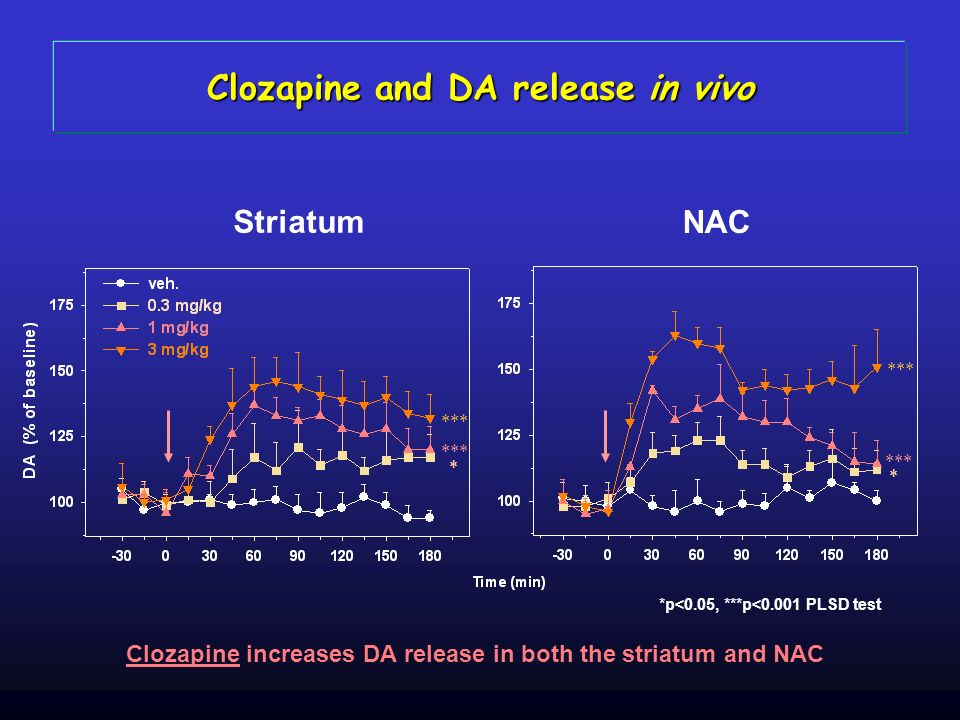 Clozapine and DA release in vivo