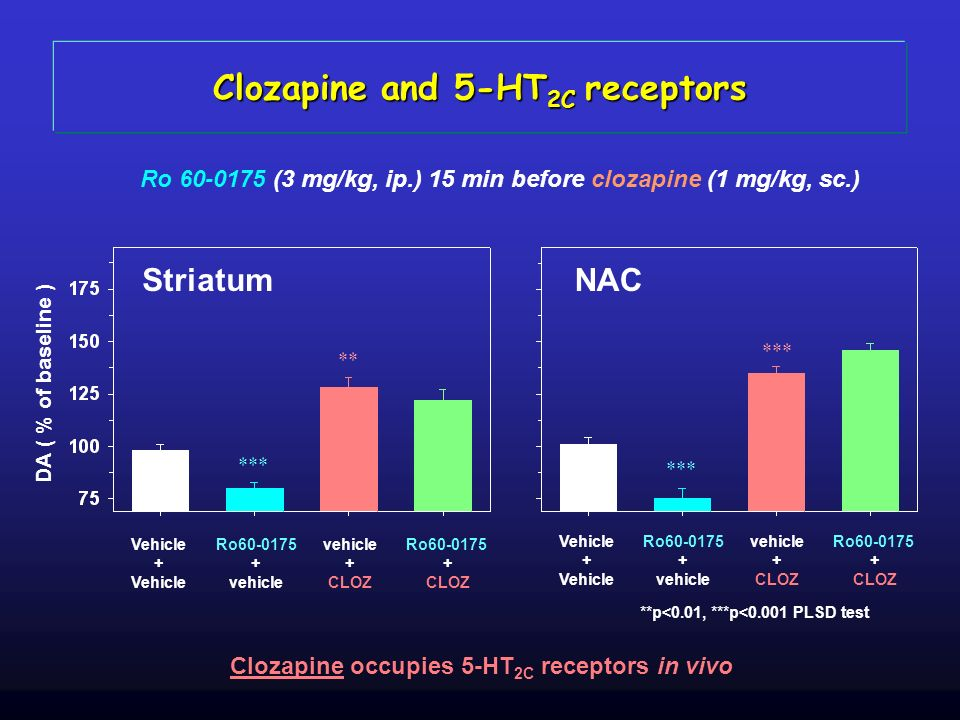 Clozapine and 5-HT2C receptors