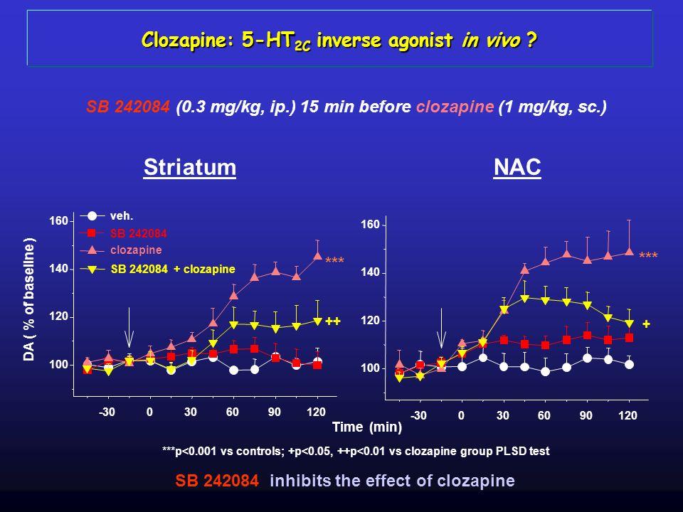 Striatum NAC Clozapine: 5-HT2C inverse agonist in vivo