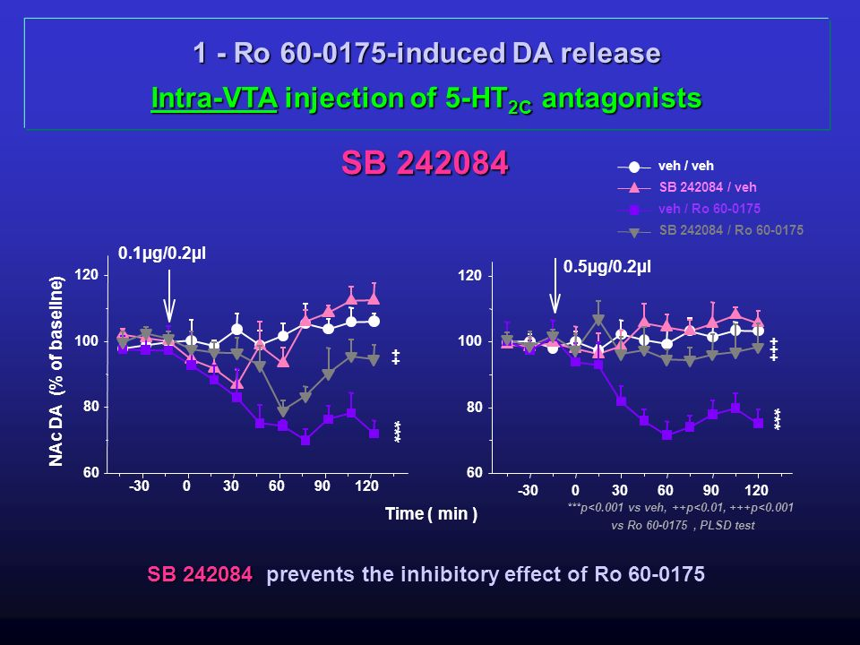 SB 242084 1 - Ro 60-0175-induced DA release