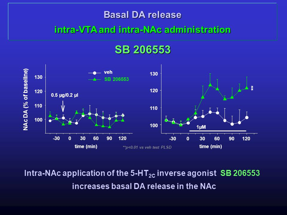 SB 206553 Basal DA release intra-VTA and intra-NAc administration