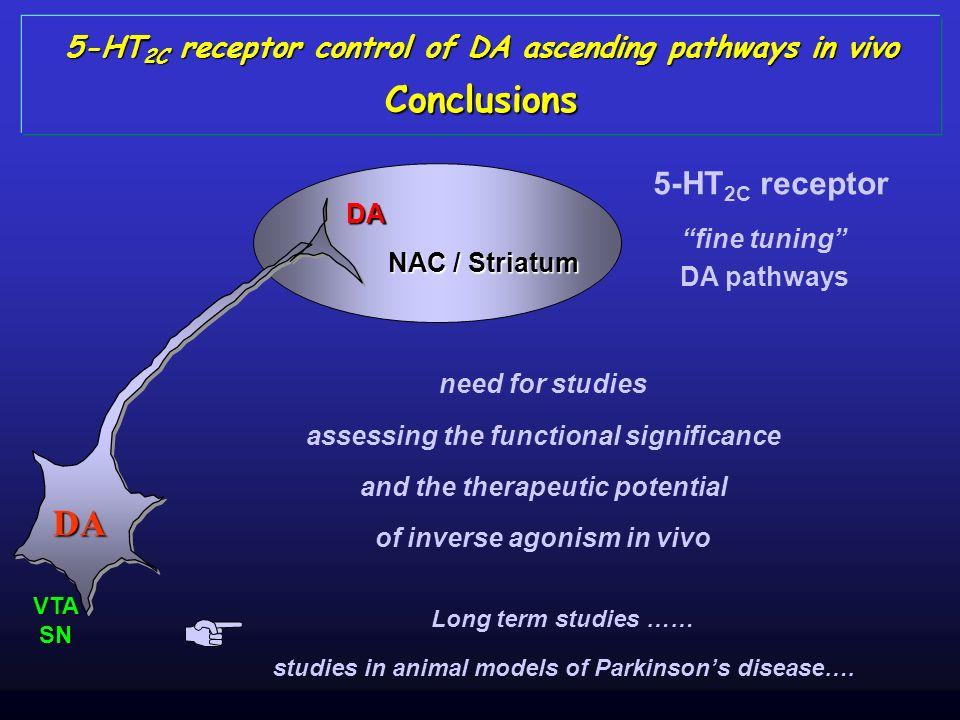 Conclusions DA 5-HT2C receptor