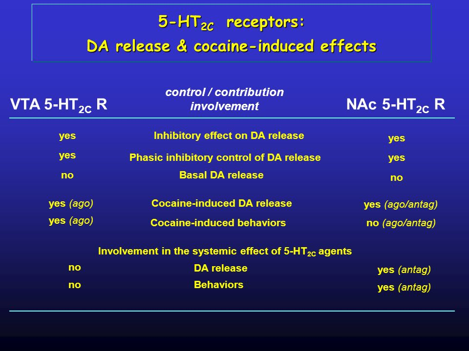DA release & cocaine-induced effects