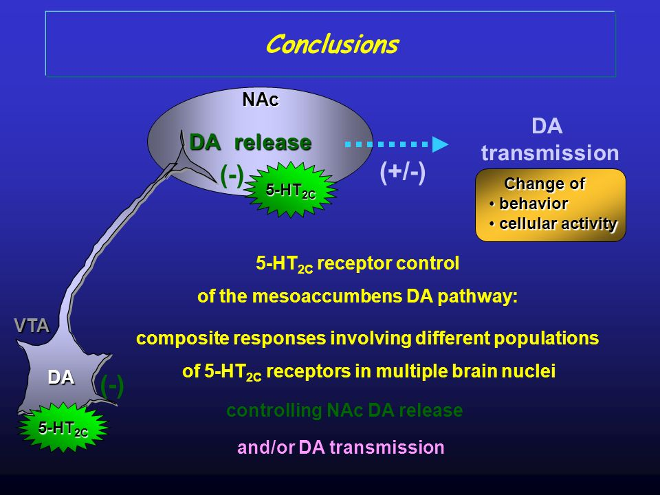 Conclusions (+/-) (-) DA transmission release DA NAc Change of