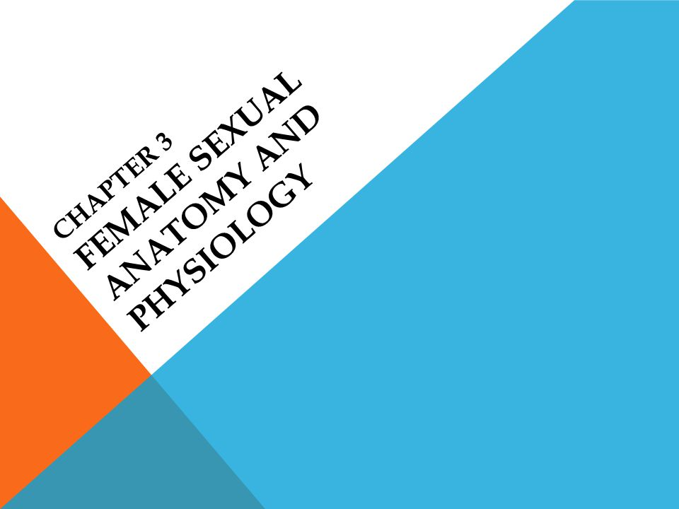 Chapter 3 Female Sexual Anatomy and Physiology