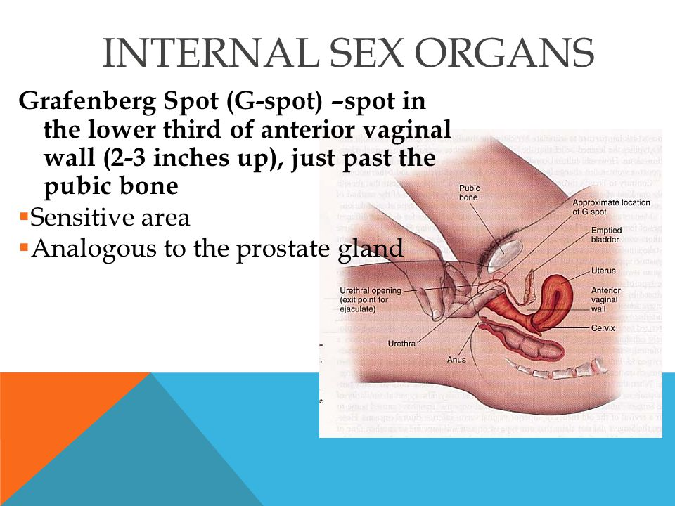 Sensitive area of vagina