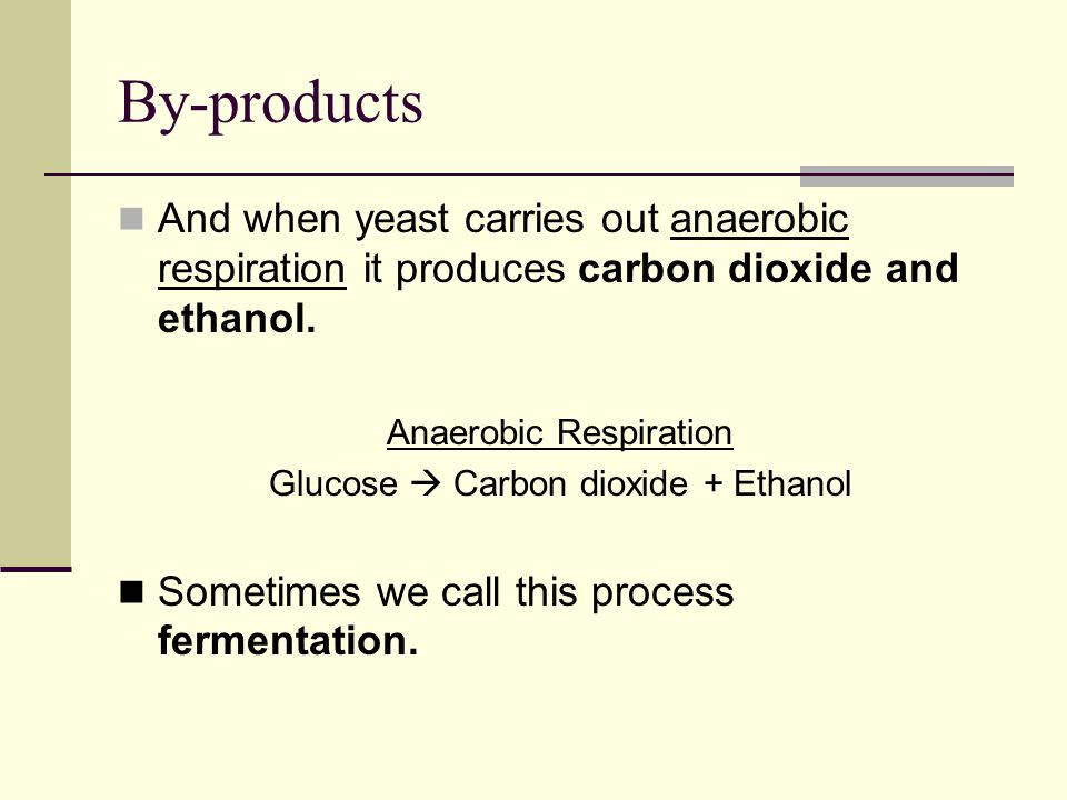 anaerobic respiration in bacteria How cells extract energy from glucose without oxygen in yeast, the anaerobic reactions make alcohol, while in your muscles, they make lactic acid.