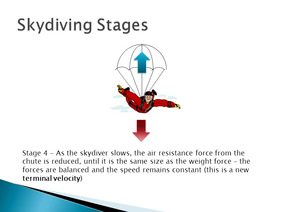 Skydiving Stages