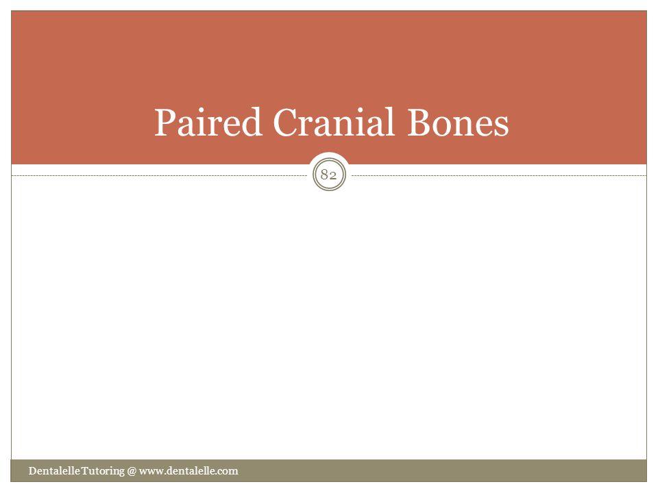 Paired Cranial Bones Dentalelle Tutoring @ www.dentalelle.com