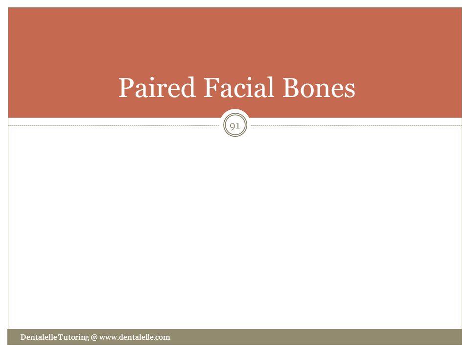 Paired Facial Bones Dentalelle Tutoring @ www.dentalelle.com