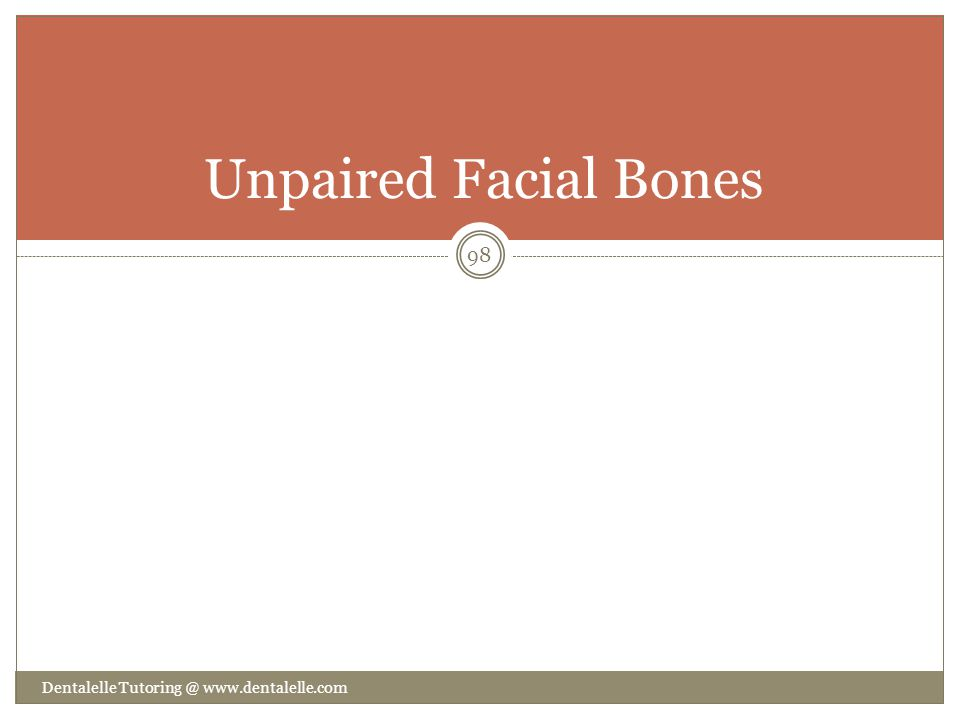 Unpaired Facial Bones Dentalelle