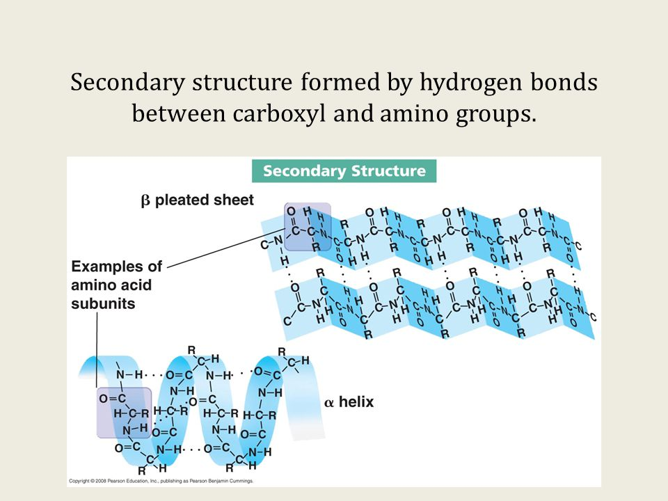 the processes caused by hydrogen bonds Hydrogen bonding is caused by the tendency of some atoms in molecules  and  this process leads to hydrogen bonds breaking and reforming.
