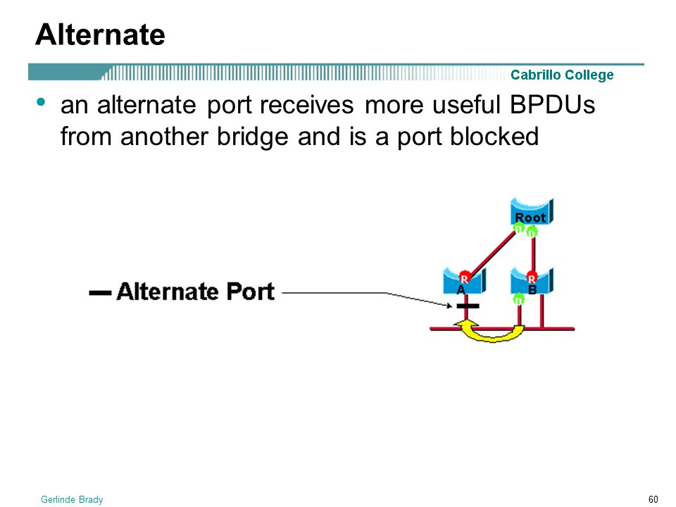Alternate an alternate port receives more useful BPDUs from another bridge and is a port blocked.