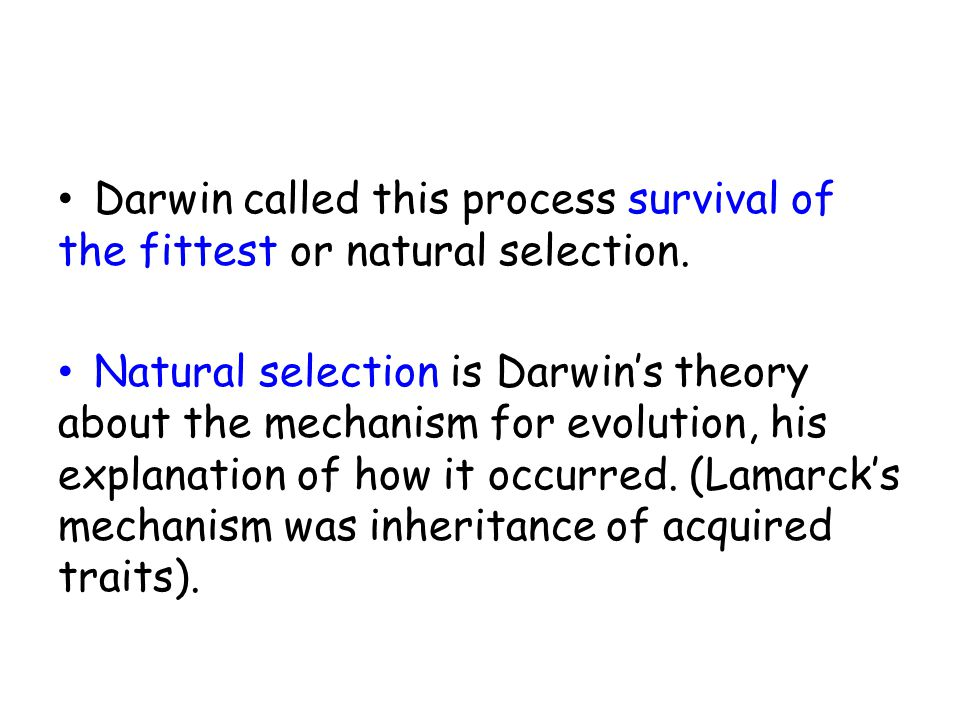 153 evolution by natural selection ppt download darwin called this process survival of the fittest or natural selection ccuart Image collections