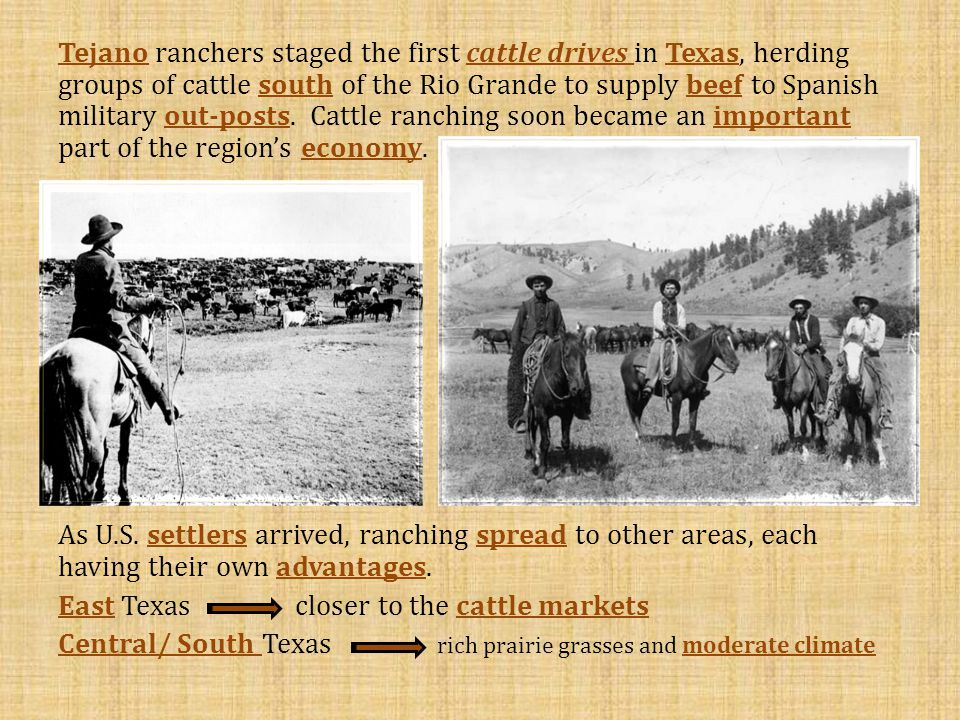 the cattle kingdom This the cattle kingdom lesson plan is suitable for 4th grade fourth graders research the texas cattle kingdom in this texas history lesson, 4th graders create a booklet with pages on cattle trails, spanish words on texas trails, brands, and the closing of the range.