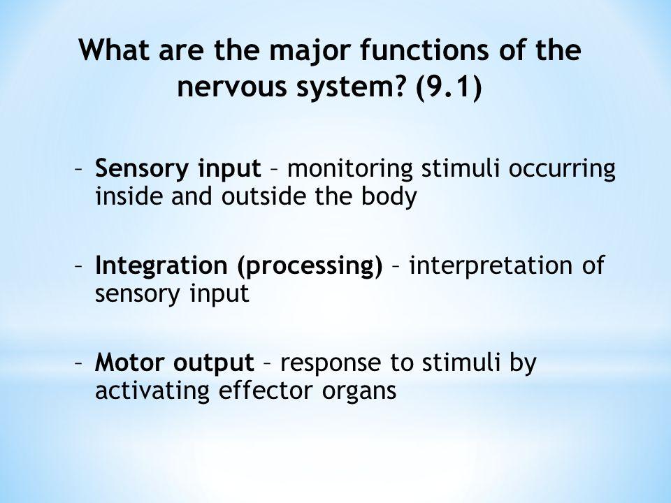 Nervous System Chapter ppt video online download
