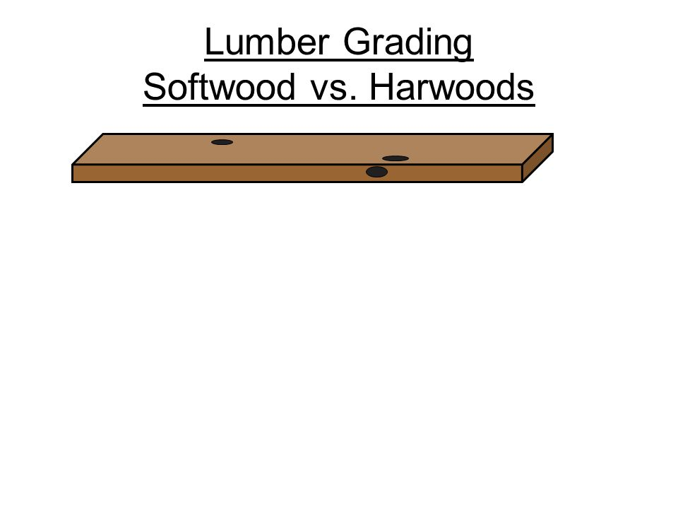 Softwood Lumber Grades ~ Taxonomy of wood products solid ppt video